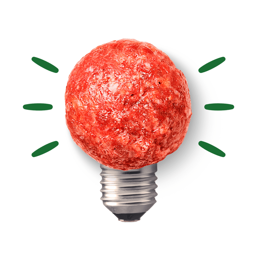 A lightbulb with a photographic meatball in place of the lightbulb.